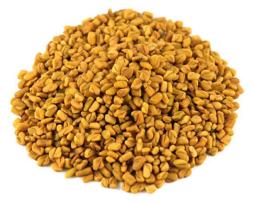 Семена Хельба (Пажитника) или желтый чай